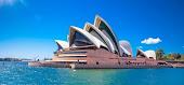 Australian student visa application drop by a third nino group